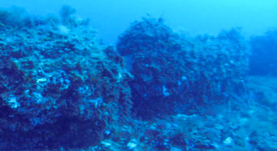 منطقه مورد مطالعه، در پانتلریا وسچیا بانک، که اکنون در زیر آب بین سیسیل و تونس قرار دارد.