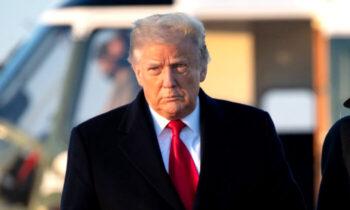 شش ایالت یافتههای گزارش وی منتشر شده در ۱۷ دسامبر و با عنوان «فریب بیعیب و نقص»، این ادعا را طرح میکند انتخابات «احتمالاً از ترامپ دزدیده