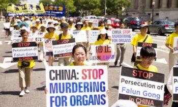 برداشت اجباری اعضای بدن رژیم کمونیستی حاکم بر چین، زندانیان عقیدتی را در مقیاس گسترده كشته و اعضای بدن آنها را برای عمل پیوند فروخته است و