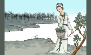 زندگیهای گذشته روزی هنگام ظهر، راهبی که عاجزانه درخواست غذا میکرد، دختری را دید که سرگرم چیدن برگهای درخت توت بود. به سراغ دختر رفت و از