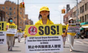 پزشکی جزئیات جدیدی درباره صنعت میلیارد دلاری برداشت اجباری اعضای بدن انسان در چین که موجب مرگ حدود یک میلیون نفر از «اهداکنندگان» غیرداوطلب